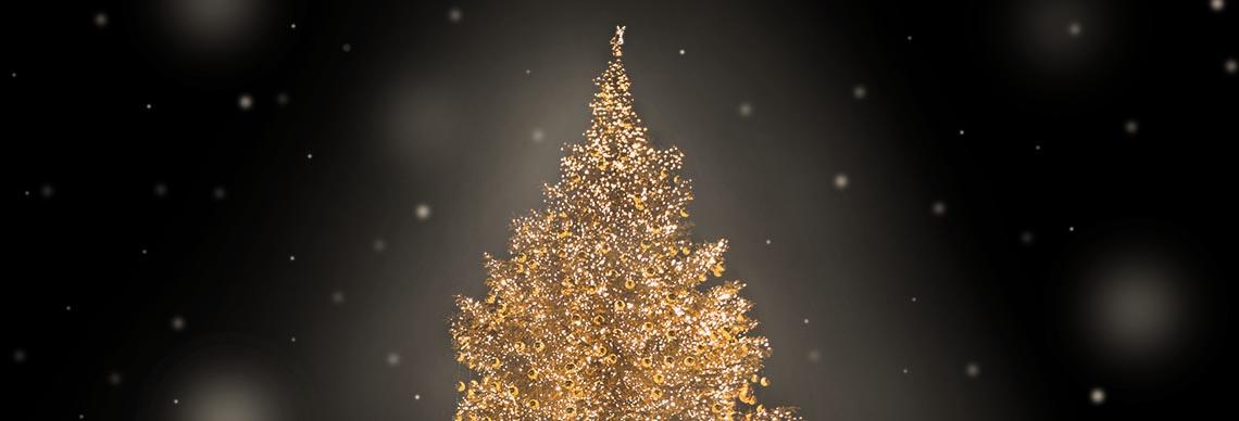 Weihnachtsbeleuchtung B2B Großhandel Gastro online kaufen